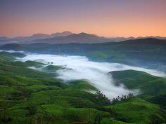 Утренний туман... )))
