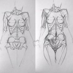 Anatomy Sketches, Anatomy Drawing, Anatomy Art, Art Sketches, Art Drawings, Body Reference Drawing, Human Figure Drawing, Art Reference, Anatomy For Artists