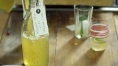 Meduňkový sirup na spaní — Recepty — Herbář — Česká televize