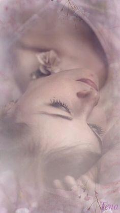 SOFT AND DREAMY --Tena Virden
