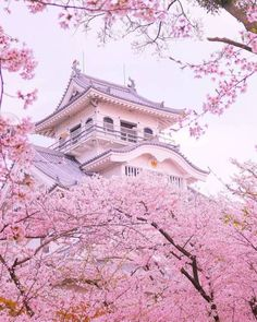 Cherry blossom on the ancient japanese castle - Petra Schwarz - Pin To Travel Aesthetic Japan, Japanese Aesthetic, Travel Aesthetic, Pink Aesthetic, Belle Image Nature, Cherry Blossom Japan, Japanese Cherry Blossoms, Japanese Blossom, Japanese Geisha