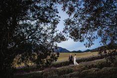 Creative images photography wedding.