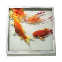 Goldfish sips from surface  Original Painting on by scoutcuomo, $370.00
