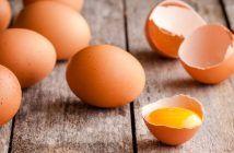 Aan het blokken? Een ei kan er nog altijd bij!