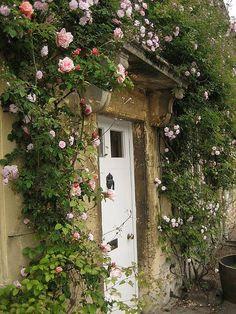 35 New Ideas for country cottage front door climbing roses Cottage Front Doors, Cottage Door, Garden Cottage, Rose Cottage, Cottage Style, Coastal Cottage, Ivy House, House Front, Cottages Anglais