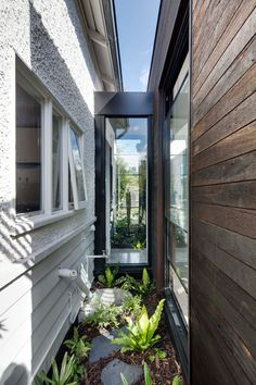 Garden room architecture Melbourne Garden Room by Tim Angus is a black extension Melbourne Garden, Melbourne House, Garden Room Extensions, House Extensions, Glass Walkway, Contemporary Garden Rooms, Cottage Extension, Edwardian House, Old Cottage