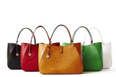 Have you met Camilla? Check out the Dooney & Bourke Sahara collection made exclusively in Italy!