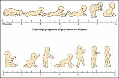 Motor Milestones: Part One Dinosaur Physical Therapy Simple activities for parents to help their infant with motor development Development Milestones, Physical Development, Baby Milestones, Child Development, Pediatric Milestones, Baby Development Chart, Language Development, Pediatric Occupational Therapy, Pediatric Ot
