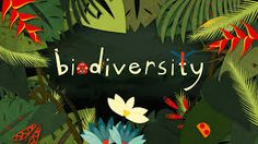 #Biodiversity is the variety of all living things; the different plants, animals and micro organisms, the genetic information they contain and the ecosystems they form. Biodiversity is usually explored at three levels - genetic diversity, species diversity and ecosystem diversity. These three levels work together to create the complexity of #life on #Earth. READ MORE…