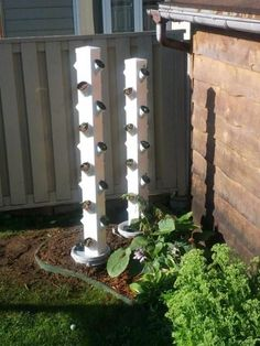Hydroponic gardening or hydroponics is the science of growing plants using only nutrient-rich liquid as a soil replacement. Learn about hydroponics here.