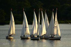 sailing school / boston / david fuller photo