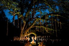 Brandon Hall Plantation, Natchez, Mississippi Wow! Gorgeous evening outdoor ceremony! This is why the south is so beautiful.