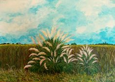 GALERIA PALOMO MARIA LUISA: LAGUNA Y CORTADERAS Plants, Painting, Clouds, Blue Nails, Scenery, Artists, Painting Art, Paintings, Plant