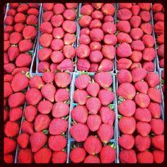 Strawberry Jalapeno Salsa Recipe