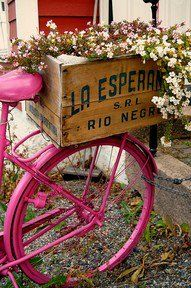 This is what my bike would look like if I rode around Provence, France...