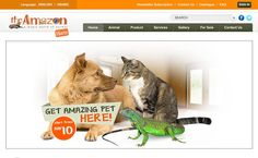 Pet Boarding, Pet Sitting, Pet Store, Psd Templates, Dogs And Puppies, Wordpress, Amazon, Pets, Gallery