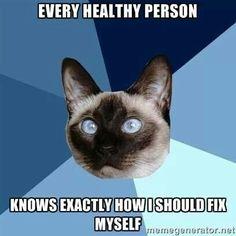 Chronic Illness Cat - Chronic Illness - EDS, Fibromyalgia, Gastroparesis, Autoimmune Disease Rheumatische Arthritis, Psoriatic Arthritis, Ulcerative Colitis, Autoimmune Disease, Crohn's Disease, Kidney Disease, Rare Disease, Thyroid Disease, Thyroid Cancer