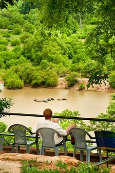 Tourist watching elephants in water hole, Mole National Park, Ghana