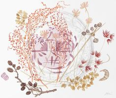 Pink Lustre Plate with Sheep's Sorrel - Angie Lewin - watercolour