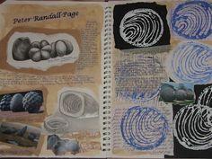 Student sketchbook 2 - Peter Randall Page A Level Art Sketchbook, Sketchbook Layout, Textiles Sketchbook, Artist Sketchbook, Sketchbook Pages, Sketchbook Inspiration, Sketchbook Ideas, Natural Form Artists, Natural Forms Gcse