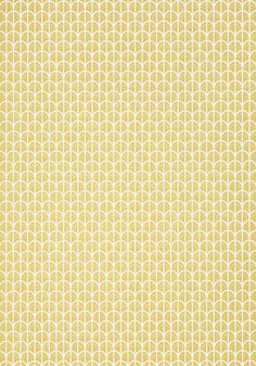 HILLOCK, Yellow, T2977, Collection Paramount from Thibaut