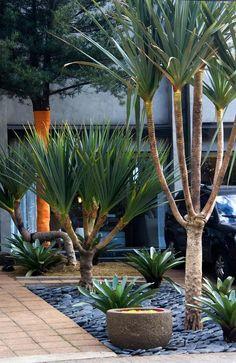 De dia! GILBERTO ELKIS PAISAGISMO  www.elkispaisagismo.com.br  FOTO: RENATO ELKIS