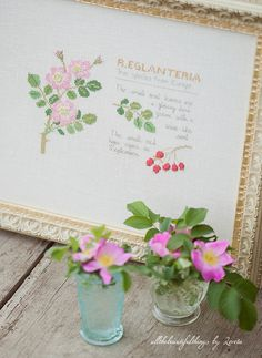 R. Eglanteria -Kazuko Aoki | Flickr – Condivisione di foto!