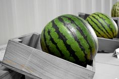 Green! #agricultura #agriculture #watermelon #photo #sandia #seeds