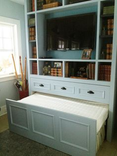 Bookcase background color with tv inserted