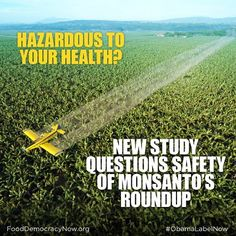 Are Americans being poisoned from food contamination of a heavily used herbicide?More Here: http://www.opposingviews.com/i/health/hazardous-your-health-new-study-question-human-safety-monsanto-s-roundup