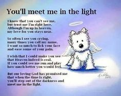 All dogs go to Heaven!