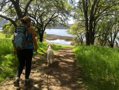 Lace up the hiking boots and hit the refresh button: the summer sizzle is on! Keep your cool with these lakeside hikes.