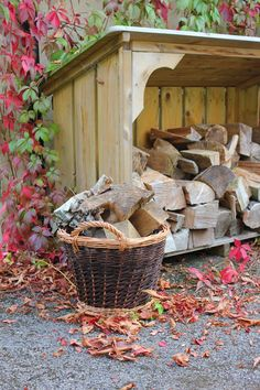 After a touch of frost hit the edges of my #garden lawn yesterday my thoughts immediately flew to having a roaring fire that very evening. The latest #Dorset Log Store Blog is all about what is the best wood for burning.