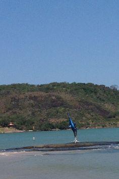Marlim-Azul e o Morro da Pescaria Praia do Morro - Guarapari ES.