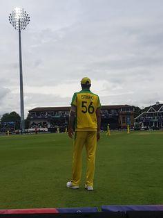 Cricket Update, Cricket News, Mitchell Starc, Cricket Match, Left Handed, Bowling