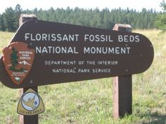 Florissant Fossil Beds National Monument, Florissant, Colorado - The site's 5,998 acres  is famous for the abundant and exceptionally preserved insect and plant fossils that are found in the mudstones and shales.