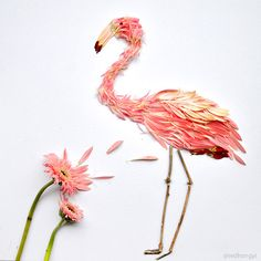 Birds Made of Flower Petals and Leaves by Red Hong Yi plants multiples flowers birds