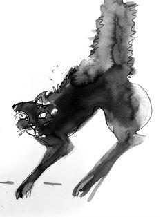 Kim Wiseman Illustration : Photo