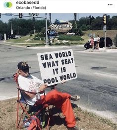 Save The Whales, Stop Animal Cruelty, Memes Of The Day, Sea World, Animal Welfare, Animal Rights, Look At You, Funny Pictures, Funny Pics