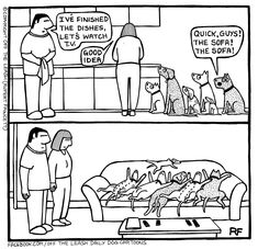Dogs have a funny way of being adorable, confusing, and frustrating at the same time, but these cartoons by Rupert Fawcett will help you shake it all off your Funny Animal Pictures, Dog Pictures, Funny Animals, Animal Funnies, I Love Dogs, Puppy Love, Cute Dogs, Animal Quotes, Dog Quotes