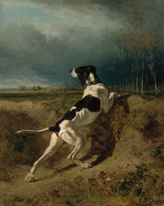 """Constant Troyon """"Hound Pointing"""" French, Museum of Fine Arts, Boston. ~ I love this sort of dog portrait :) Crazy Dog Lady, Hunting Dogs, Museum Of Fine Arts, Love Painting, Wildlife Art, Dog Portraits, Gravure, Animal Paintings, Art Reproductions"""