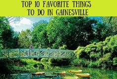 Authentic Florida - Top 10 Favorite Things to Do in Gainesville (How did I miss so many of these when I lived there?)