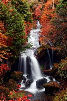 waterfall/colorful tapestry