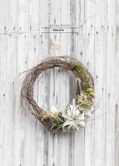 Mix some lush moss, air plants, and feathers and what do you get? This stunning and unique modern spring wreath that would look stunning on any door.