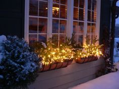 Christmas window boxes---I'm going to try and do this with my window boxes this year.should look nice with my indoor window candles in the background. Can't wait for the holidays now! Winter Window Boxes, Christmas Window Boxes, Outdoor Christmas, Winter Christmas, Christmas Lights, Candles In Windows Christmas, Christmas Holidays, Xmas, Christmas Porch