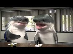 """Snickers Focus Group - I'm the shark who says """"Steve was delicious"""""""
