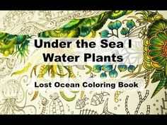 Under the sea I Water Plants | Lost Ocean Coloring Book by Johanna Basford - YouTube