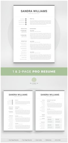1 Page Resume Pleasing Resume Template  1 Page Resume  2 Page Resume  Professional Cv .