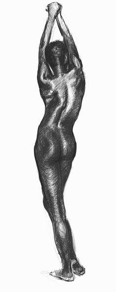 Anatomía de una espalda