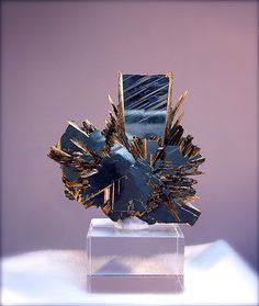 Rutile crystals on mirror like Hematite, Northeast Region, Brazil, 4cm